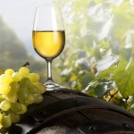 Food_Drinks_Grape_wine_glass_026811_